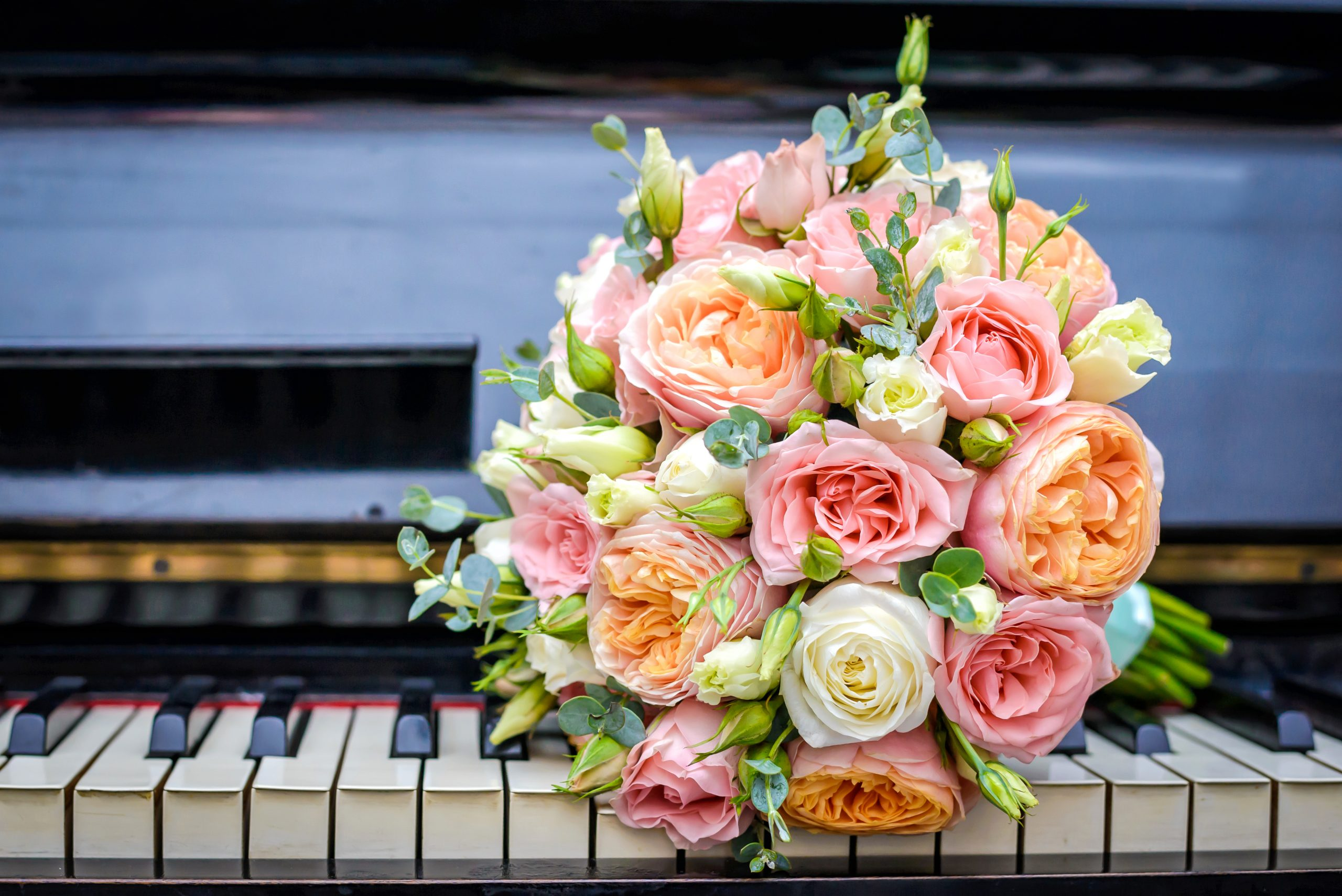 The Music at Your Wedding and Why it Really Matters